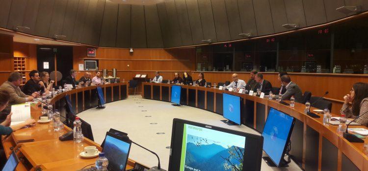 Dispariția pădurilor virgine din România, în lumina reflectoarelor, la Bruxelles