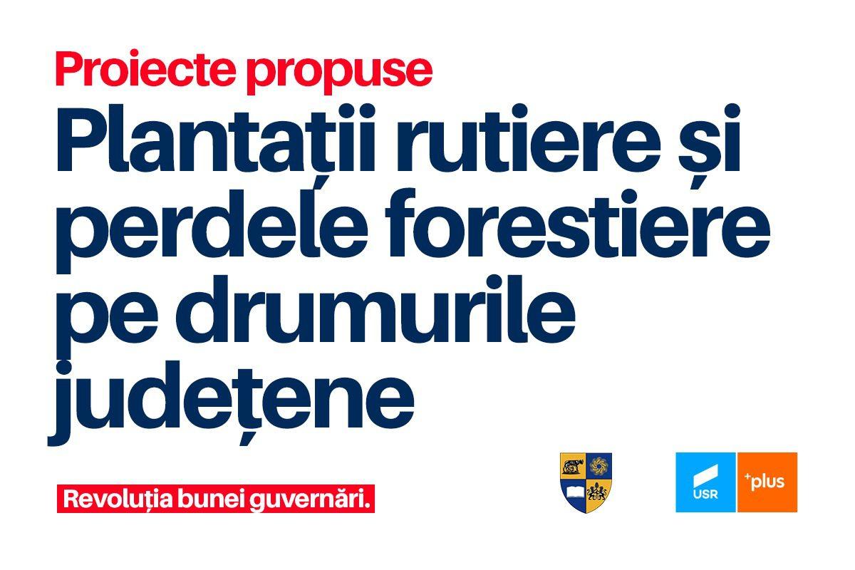 Elena Muscă: Proiect pilot pentru creșterea suprafeței împădurite în Cluj!